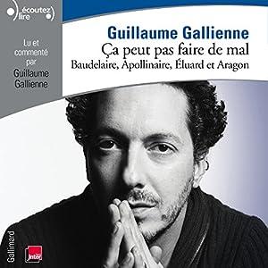 Baudelaire, Apollinaire, Éluard et Aragon lus et commentés par Guillaume Gallienne (Ça peut pas faire de mal 2) Performance
