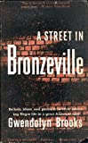 A Street in Bronzeville : Ballads, Blues, and Portraits-In-Verse Reflecting Negro Life in a Great American City