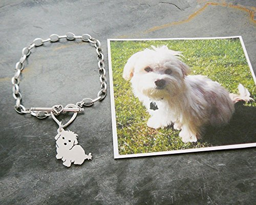 Custom Dog Chain Bracelet, 925 Sterling TaGette Silhouette made from your pet photo memorial Jewelry (Schnauzer Italian Charm compare prices)