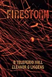 img - for Firestorm book / textbook / text book