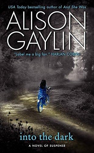 Image of Into the Dark: A Novel of Suspense (Brenna Spector Novel)