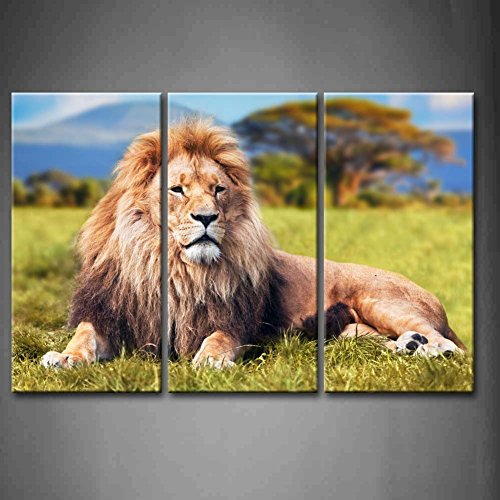 3 Panel Wall Art Big Lion Lying On Savannah Grass With Trees And Hills Painting The Picture Print On Canvas Animal Pictures For Home Decor Decoration Gift Piece (Stretched By Wooden Frame,Ready To Hang)