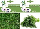 DCS Doob Grass & Soya Baji Seeds (Per Pack Of 1 Grams)