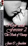 img - for Now and Forever 2 (The Book of Danny) book / textbook / text book