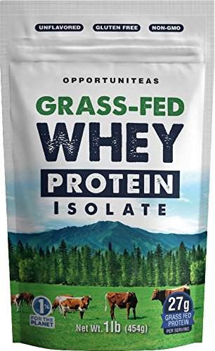 Grass Fed Whey Protein Powder Isolate | Unflavored + Cold Processed + Undenatured | Pure Grassfed Protein Ideal for Shake, Smoothie or Drink | Natural + Non GMO | 16 oz / 1 pound