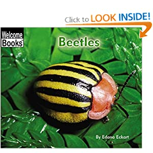 Beetles (Welcome Books: Animals of the World)