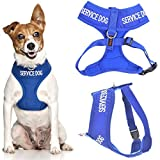 Service Dog Blue Color Coded Waterproof Padded Adjustable Non Pull Front and Back Ring Alert Warning Small or Medium Vest Dog Harness Prevents Accidents By Warning Others of Your Dog in Advance (Small Vest Harness)