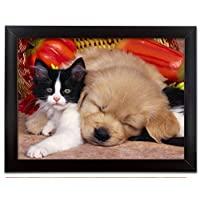 Puppy Sleeping with Kitten 3D Dimensional Holographic Lenticular Animated Framed Poster Wall Art Print - Size: 17.5 In. x 13.5 In.