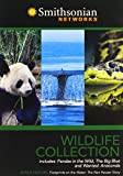 Smithsonian Networks Wildlife Collection [Import]