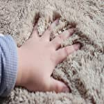 FADFAY Home Textile,Brand Shaggy Rugs...