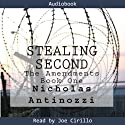 Stealing Second: The Amendments (       UNABRIDGED) by Nicholas Antinozzi Narrated by Joe Cirillo