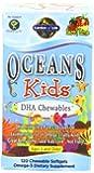 Garden of Life Oceans 3 Oceans Kids, 120 Chewables