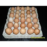 10 x NEW GREY EGG TRAYS HOLDS 30 EGGS