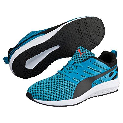 Puma Flare, Chaussures de course homme