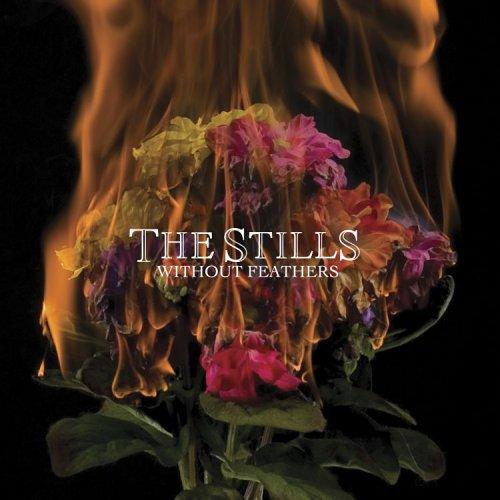 The Stills - In The Beginning Lyrics - Zortam Music