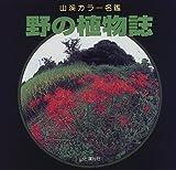 野の植物誌 (山渓カラー名鑑)