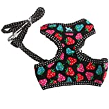 Imported Sweet Strawberry & Dots Dog Puppy Harness Leash Lead Walking Collar Black S