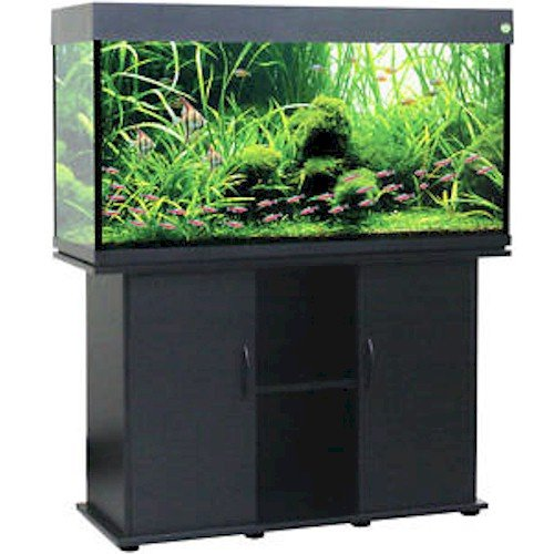 Saltwater fish tanks for sale delta queen collection for Amazon fish tanks for sale