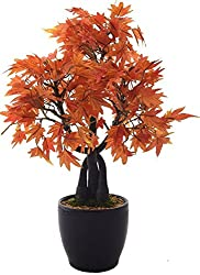 Fourwalls Bonsai Japanese Maple Plant (233 Leafs, 39 cm, Mixed Material, Orange)