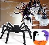恐怖の館 蜘蛛 蜘蛛の糸 巨大 クモ 黒 蜘蛛 75cm と 蜘蛛 4cm スパイダー ウェブ お化け 屋敷 家 ハロウィン デコレーション 玄関 飾り ホラー