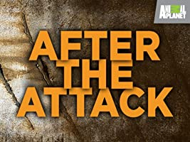 After the Attack Season 1