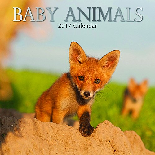 Cute Adorable Baby Animals 2017 Monthly Wall Calendar, 12