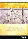 echange, troc The Assyrian Lion Hunt Reliefs [Import anglais]