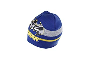 DC COMICS Gorro Batman Stripe (Azul)