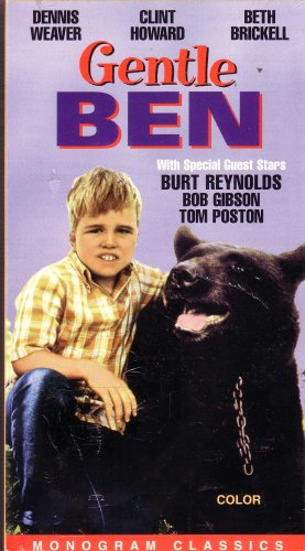 gentle ben book report
