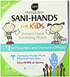 Sani-Hands Instant Hand Sanitizer Wipes, 24-Count  Boxes (Pack of 6)