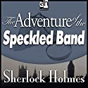 Sherlock Holmes: The Adventure of the Speckled Band Audiobook by Arthur Conan Doyle Narrated by Edward Raleigh