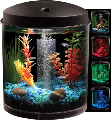 Spiffy Pet Products Best Diy African Dwarf Frog Tank