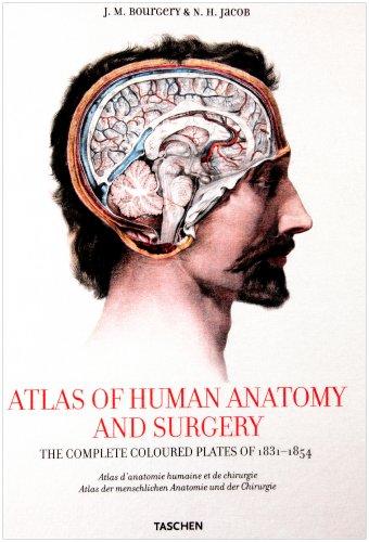 Bourgery, Atlas of Anatomy: Anatomie Atlas