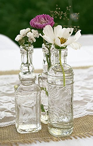 Vintage Glass Bottles with Corks, Assorted, 5 inch, Set of 10, Clear (Small Clear Glass Bottles compare prices)