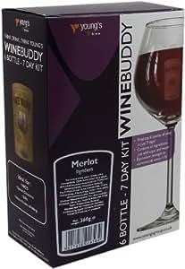 Wine Buddy/Youngs 6 Bottle Merlot