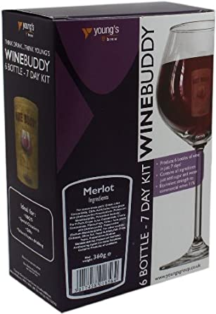 Wine Buddy/Youngs 6 Bottle Merlot