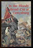 img - for In the Bloody Railroad Cut at Gettysburg book / textbook / text book