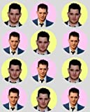 12 Michael Buble rice paper fairy cup cake 40mm toppers pre cut decoration