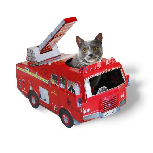 suck-uk-cat-play-house-fire-engine