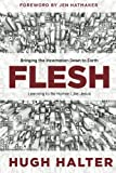 img - for Flesh: Bringing the Incarnation Down to Earth book / textbook / text book