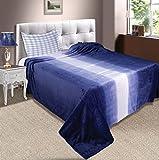 Zyne Shaded Flannel Double Blanket - Blue