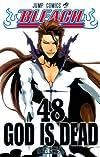 BLEACH―ブリーチ― 48 (ジャンプコミックス)