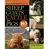 Storey's Illustrated Breed Guide to Sheep, Goats, Cattle and Pigs (Storeys Illustrated Breed Gde)by Carol Ekarius