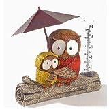 Grasslands Road Sitting Owls Rain Gauge