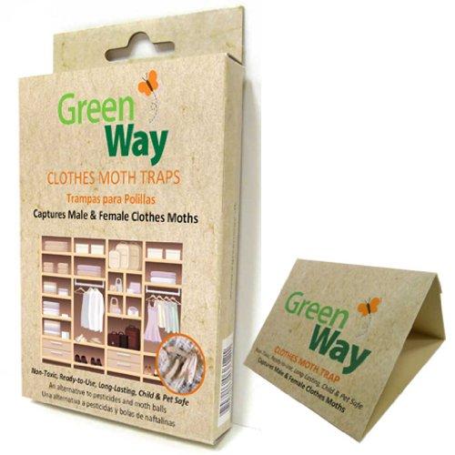 greenway-clothes-moth-trap