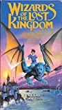 Wizards of the Lost Kingdom [VHS]