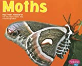 img - for Moths (Bugs, Bugs, Bugs!) book / textbook / text book