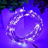 HAHOME 33Ft 100 LEDs USB Starry String Lights with Power Adapter for Wedding Christmas Party Decoration,Purple