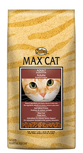 Nutro MAX CAT Adult Salmon Flavor