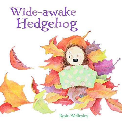 wide-awake-hedgehog